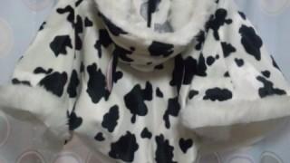超会議に牛と三毛猫のケープを展示頂くことになった