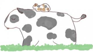 牛と三毛猫のケープつくってみた。【手芸祭出品作】